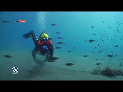 VI gran limpieza de fondos marinos