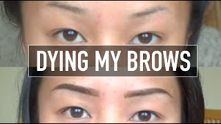 getlinkyoutube.com-DYING MY EYEBROWS USING GODEFROY EYEBROW TINT| theroyalhiness