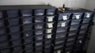 getlinkyoutube.com-OnlineGeckos.com Gecko Room Tour - A look at our rack system, incubators, and equipment setup
