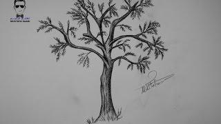 getlinkyoutube.com-تعلم رسم شجرة بالرصاص خطوة بخطوة للمبتدئين