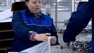 Объемы производства кубанской рыбной продукции падают