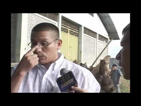 Pymes Peru  de canal 49 Visita a la Cooperativa  Oro Verde II Tarapoto