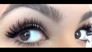 getlinkyoutube.com-Perfect Mascara Routine for Huge Long Lashes