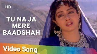 getlinkyoutube.com-Tu Na Ja Mere Badshah - Amitabh Bachchan - Sridevi - Khuda Gawah - Bollywood SuperHit Songs [HD]