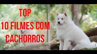 getlinkyoutube.com-10 filmes com Cães  - filmes com cachorros que você precisa ver - Filmes de Cachorros