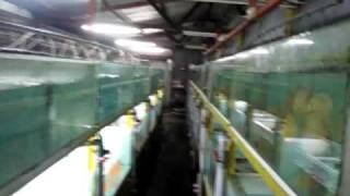 getlinkyoutube.com-Lucky Tropical Fish Farm Whole Farm View Part 1