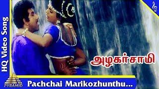 Pachchai Marikozhunthu Video Song |Azhagarsamy Tamil Movie Songs | Sathyaraj | Roja |Pyramid Music