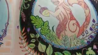 getlinkyoutube.com-Livro de colorir _Floresta Encantada _ Tour nas páginas _ Enchanted Forest