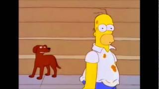 getlinkyoutube.com-Los perros que hablan no existen