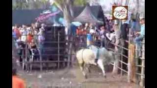 getlinkyoutube.com-Fiesta de Manuel y las Hnas  Domínguez El Cedro de Macaraas 15 02 2014