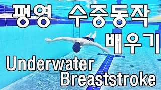 getlinkyoutube.com-수영강습 / 평영 수중동작 배우기 / Underwater Breaststroke