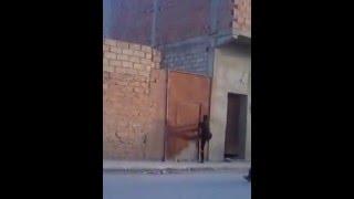 getlinkyoutube.com-سرقة في وضح النهار في حي لقندوز حاسي بحبح