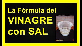getlinkyoutube.com-La Fórmula de la Sal y el Vinagre