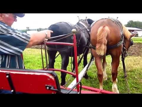 Green Mountain Draft Horse Association farm implement demonstrations