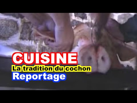 Anthropologie : La Tradition Du Cochon En Aveyron