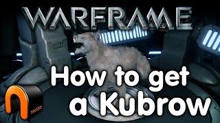 getlinkyoutube.com-Warframe How to get a Kubrow
