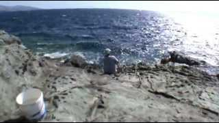 getlinkyoutube.com-Απίκο στα βράχια με Ζυμάρι - Pole Fishing on the Rocks