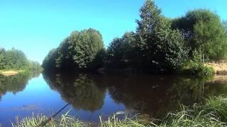 getlinkyoutube.com-Рыбалка на живца поплавочной удочкой. Fishing, Russian style!