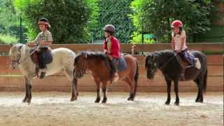 getlinkyoutube.com-Stage de poney
