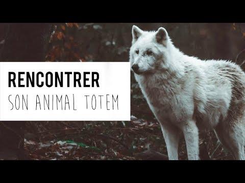 Rencontrer son animal totem, MÉDITATION GUIDÉE