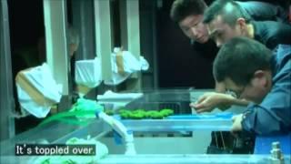 getlinkyoutube.com-Takashi Amano - Film dokumentalny - Polskie napisy