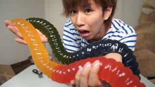 getlinkyoutube.com-世界最大級のグミを1人で食う!(多分)
