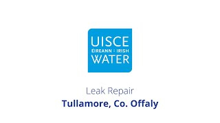Video Thumbnail: #FixingLeaks   Tullamore, Co. Offaly