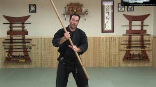 Rokushaku Bo Introduction - Part 2 backspin - Ninja Training Video Blog