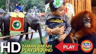 getlinkyoutube.com-taman safari part 2 - Playground
