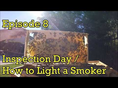 Flow Hive - Episode 8 -  How to Light a Smoker / Inspection Day