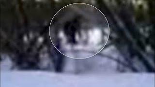getlinkyoutube.com-REAL YETI/BIGFOOT CAUGHT ON CAMERA 2014?!!?