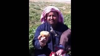 getlinkyoutube.com-فقع الشمال شغل ابو فهد     ولمحفار اسحري