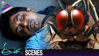 Nani Rebirth as Fly | Samantha Shocked by Nani's Demise | Eega Malayalam Movie Scenes | EECHA Movie