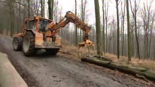 getlinkyoutube.com-Markierte Bäume - Sachgeschichten - Die Sendung mit der Maus - WDR Fernsehen