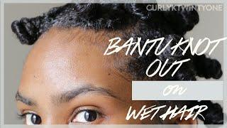 getlinkyoutube.com-Natural Hair: Bantu Knot Out on Wet Hair
