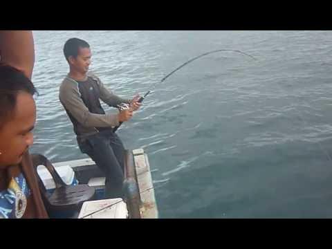 Eke Memancing ikan kerapu di perairan Sazali Sabah pada 5 Januari 2013.