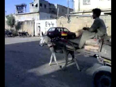 German Donkey Cart