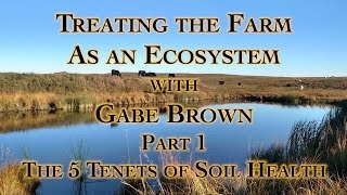 Treating the Farm as an Ecosystem with Gabe Brown Part 1 The 5 Tenets of Soil Health