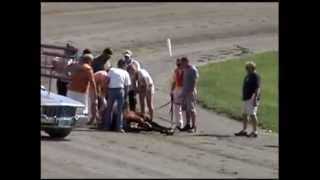 getlinkyoutube.com-Out & About~Maine. The Windsor Fair with a Harness racing crash.