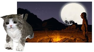 getlinkyoutube.com-Meet EPIC CAT ( Stereo 3D / 360° Video )