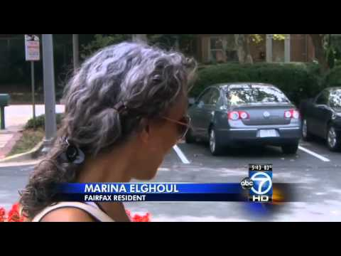 Fairfax County prostitution bust nets 23