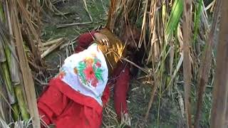 Muzaffarnagar GAN GRAPE double murder case