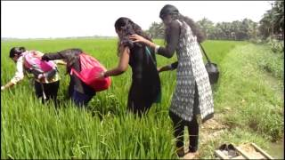 Tamil Christian Short Film | Nambikkaiyin Vithu | WAV tones