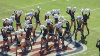 getlinkyoutube.com-Carolina Panthers TopCats 1-12-14