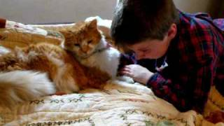 getlinkyoutube.com-Shocking Reunion of Boy and His Missing 11 Yr Old Cat