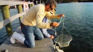 getlinkyoutube.com-How to Catch Blue Crabs