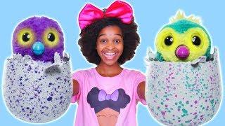 getlinkyoutube.com-RECKLESS JOKER SHASHA Crushes Bad Baby Hatchimal Toy - Shiloh Toys Under Car! - Onyx Kids