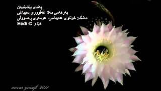 getlinkyoutube.com-په ندى پيشينيان Kurdish Proverbs