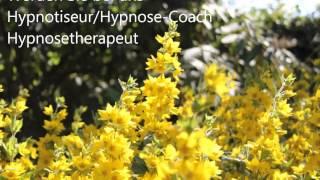 getlinkyoutube.com-Gewichtsreduzierung Hypnose Hypnoseschule Abnehmen