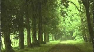 getlinkyoutube.com-أصوات الطبيعة بدون موسيقى 7